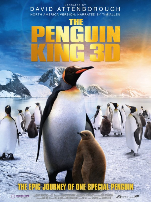 penguin_king_3d_xlg [800x600]